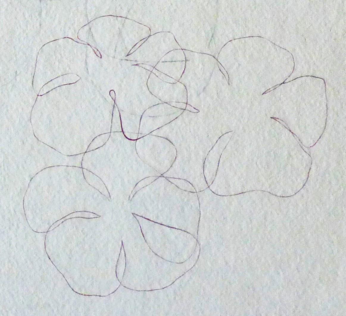Flowers, Edit 1, flowers detail