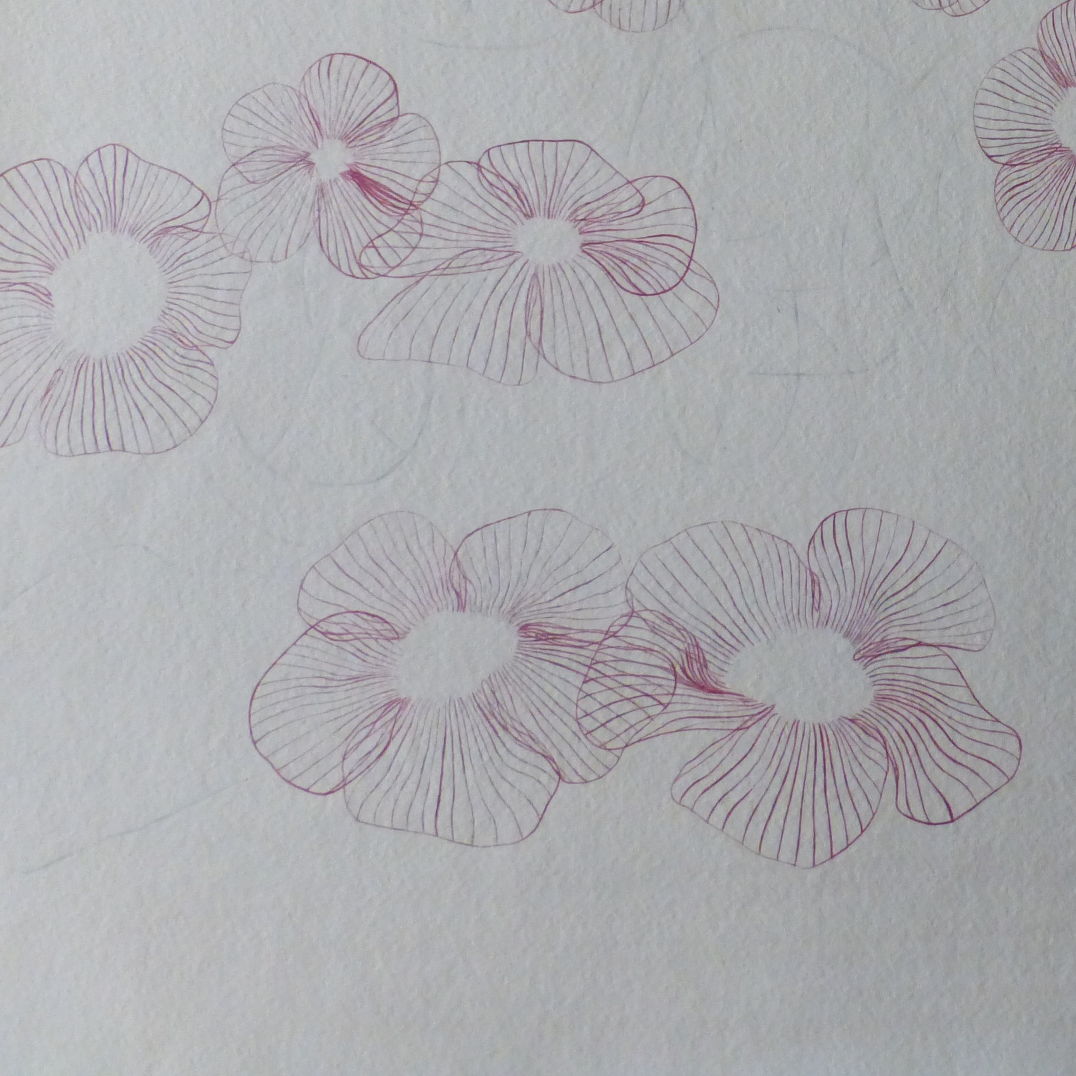 flowers ii, edit i 012119, detail (4)