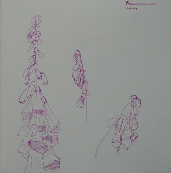 GAA WAI Sketchbook 2019 2020 (4)